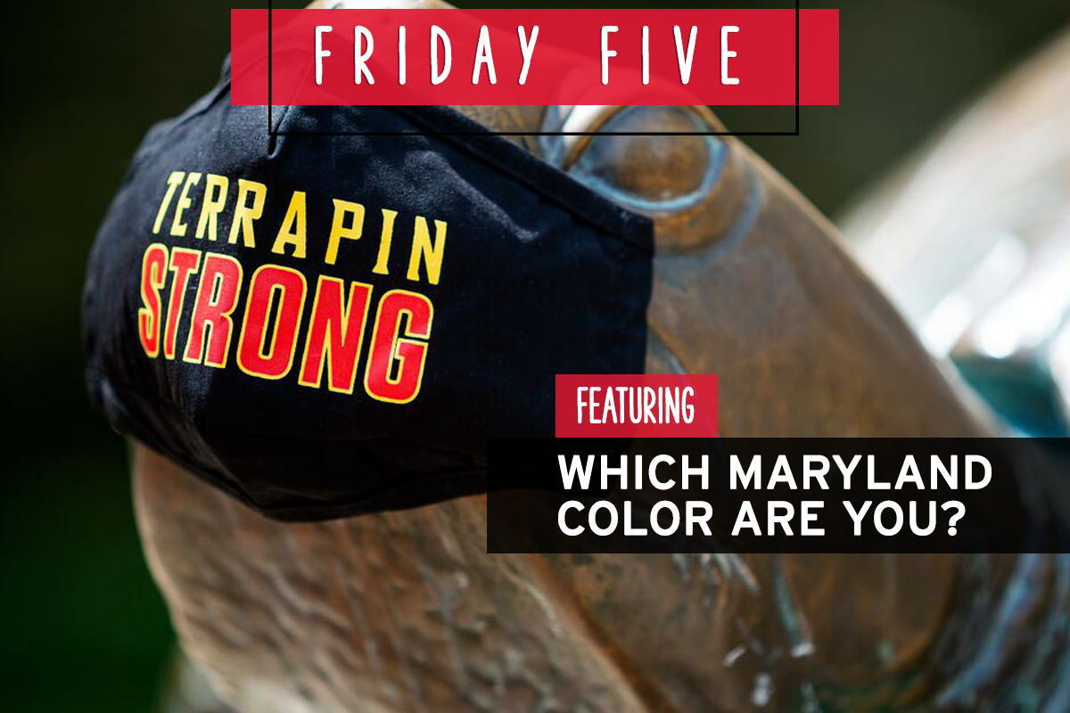 Friday Five, Featuring Which Maryland Color Are You? Bronze Testudo wearing a Maryland face mask