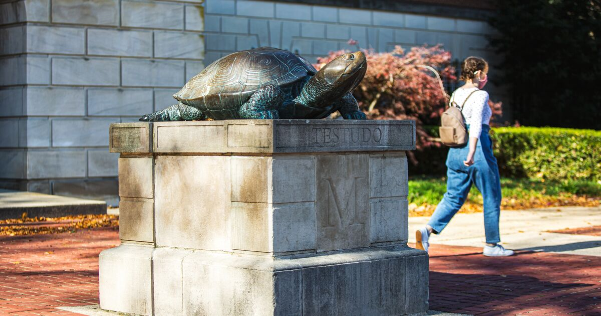 Bronze Testudo in front of McKeldin Library