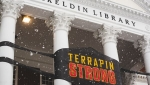 Terrapin Strong banner over the columns of the McKeldin Mall while it snows