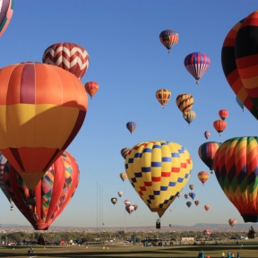 hot air balloons in the air